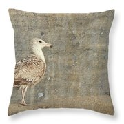 Seagull - Jersey Shore Throw Pillow