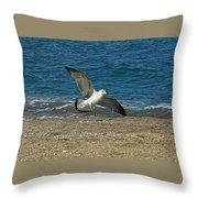 Seagull Landing Throw Pillow