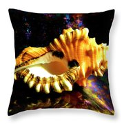 Seashell Cymatium Lotoium Throw Pillow