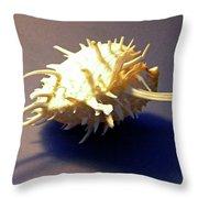 Seashell Spondylus Americanus Throw Pillow
