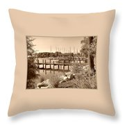 Sepia Waterscape Throw Pillow