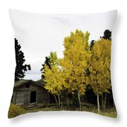 September's Soliloquy Throw Pillow