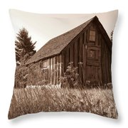 Shack At Stoney Point Throw Pillow