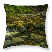 Shackleford Falls Throw Pillow