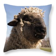 Sheep Face Throw Pillow