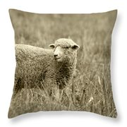 Sheep In A Meadow Throw Pillow