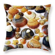 Shell Background Throw Pillow