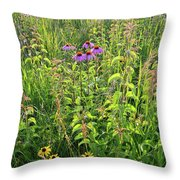 Shelley Kelly Prairie Wildflowers Throw Pillow