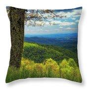 Shenandoah Valley Np Throw Pillow