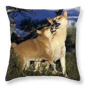 Shiba Inu And Her Puppy Throw Pillow
