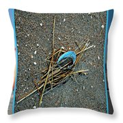 Shore Find Throw Pillow