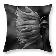 Shut Out The Darkness Throw Pillow