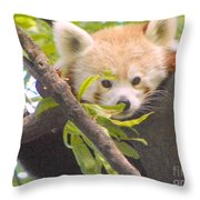 Shy Red Panda Throw Pillow