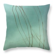 Silent Flight Throw Pillow
