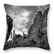Silent Serenity Throw Pillow