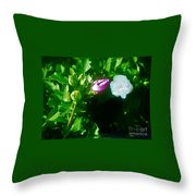 Simplicity Is Its Own Reward Throw Pillow