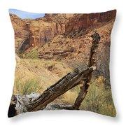 Simply Utah 5 Throw Pillow