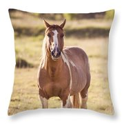 Single Horse Throw Pillow