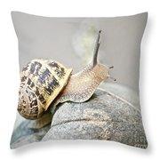 Slug Throw Pillow