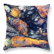 Small Rocks On The Beach Throw Pillow