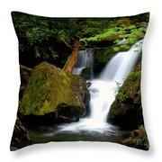 Smoky Mountain Falls Throw Pillow