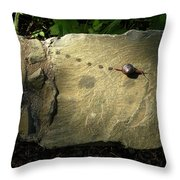 Snail Trail Throw Pillow