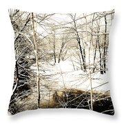 Snow-covered Stream Banks, Pennsylvania Throw Pillow