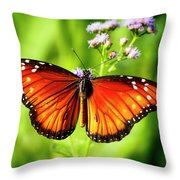 Soldier Butterfly Throw Pillow