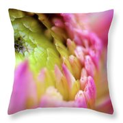Some Of My Favourite Things 2 Throw Pillow