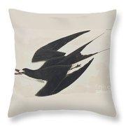 Sooty Tern Throw Pillow