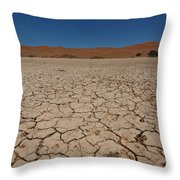 Sossuvlei  Throw Pillow