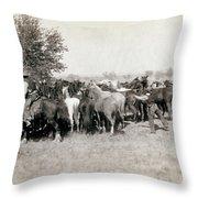 South Dakota: Cowboys Throw Pillow