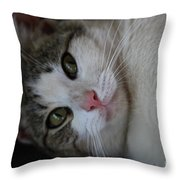 Soxx Throw Pillow