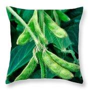 Soybeans Throw Pillow