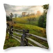 Splash Of Morning Light Ap Throw Pillow
