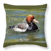 Splash Time Throw Pillow