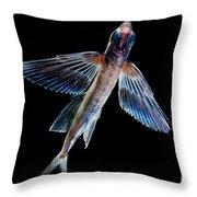 Spotfin Flyingfish Throw Pillow