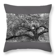 Sprawling Live Oak Throw Pillow