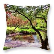 Spring At Tappan Park Pond Throw Pillow