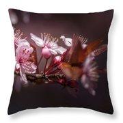 Spring Beauty- 2 Throw Pillow