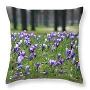 Spring Flowering Crocuses Throw Pillow