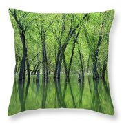 Spring Green Reflections  Throw Pillow by Lori Frisch