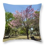 Spring In Winter Park Throw Pillow