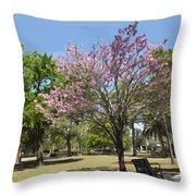 Spring Magnolia In Winter Park  Throw Pillow