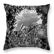 Spring Rain - 365-13 Throw Pillow