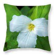Spring Trillium Throw Pillow