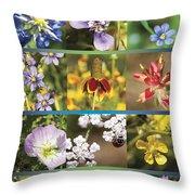 Spring Wildflowers II Throw Pillow
