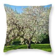 Springtime Blossoms Throw Pillow