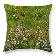 Springtime In South Africa Throw Pillow