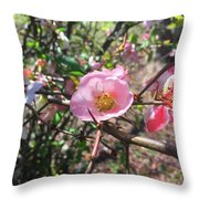Springtime In The South Throw Pillow
